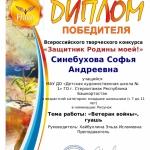 Синебухова Софья Андреевна