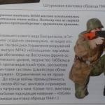 Оружие rbart1.ru (11)
