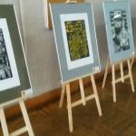 Выставка «Салют Победы» (7)
